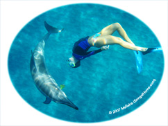 Dolphin & Chrissy in a Spiral Dance...